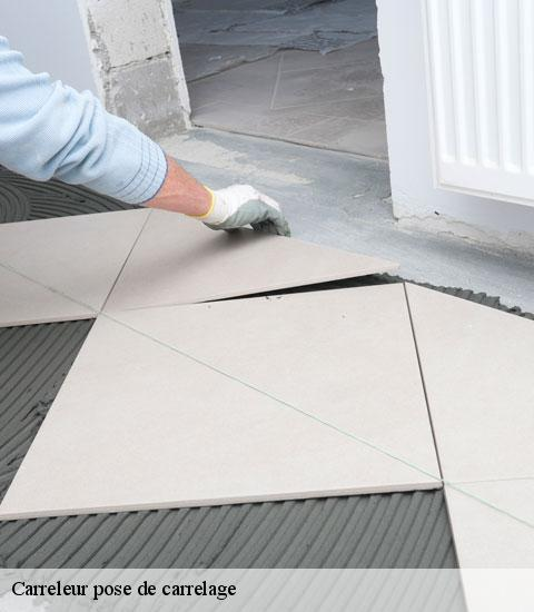 Carreleur pose de carrelage  95450